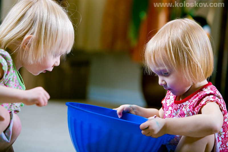 Toddler twins portrait